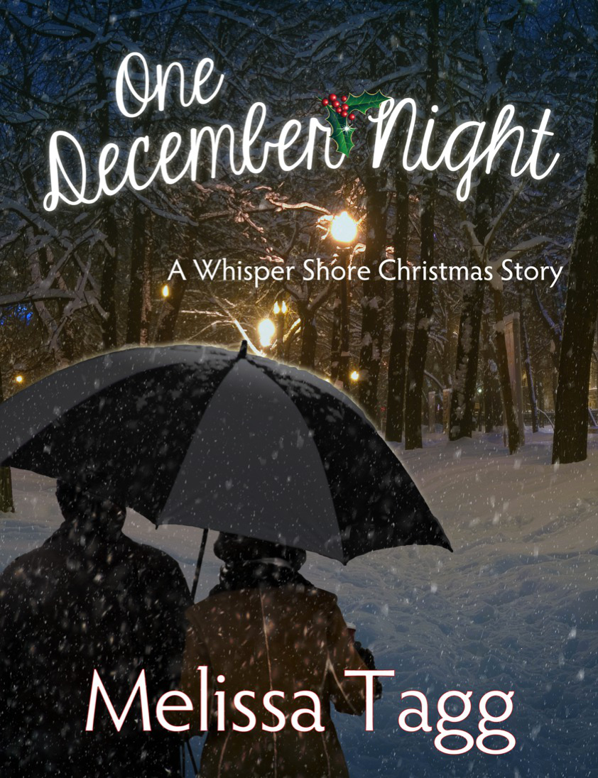 One December Night (free e-short)